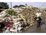 Mengolah Sampah Menjadi Etanol