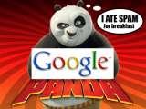 Google Panda dan Bagaimana Bahaya Nya